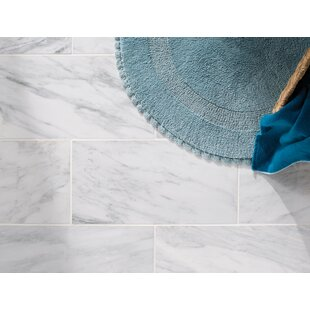 arabescato carrara 12 x 24 marble field tile in white - Turquoise Floor Tile