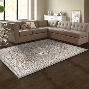 Vassar Grey Brown Area Rug