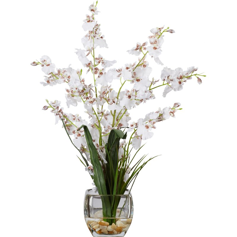 Andover Mills Silk White Orchids Floral Arrangement In Short Oval
