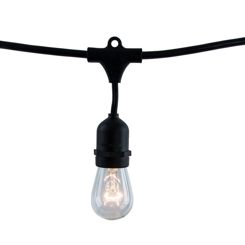 15 Light Globe String Lights & Reviews | Birch Lane