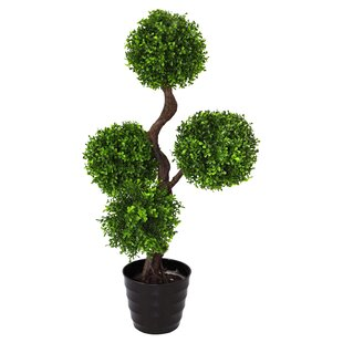 Single Artificial Large UV Boxwood Topiay Tree by Geko Products