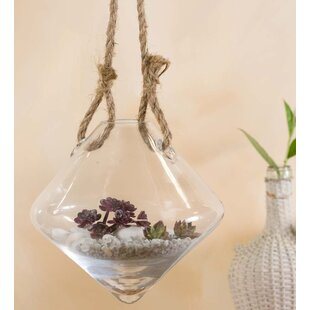 Rope Hangers Glass Wall Vase