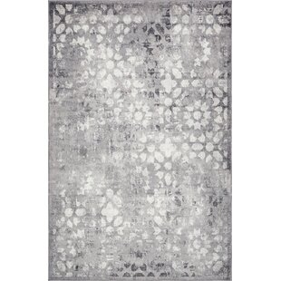 Gray Silver Rugs Youll Love Wayfair
