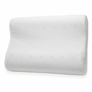 EZ Dreams Memory Foam Standard Pillow by Pegasus Home Fashions