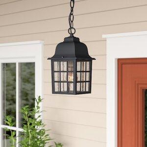 Bentonville 1-Light Outdoor Hanging Lantern