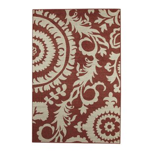 Outdoor Rugs | Birch Lane