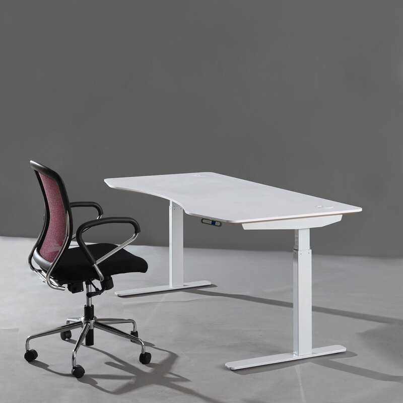 Papillion Adjustable Sit To Stand Desk Amp Reviews Allmodern