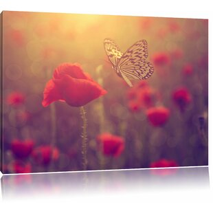 Poppy And Butterfly Wall Art On Canvas