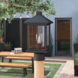 Lamp post lights youll love wayfair leroy 1 light lantern head workwithnaturefo
