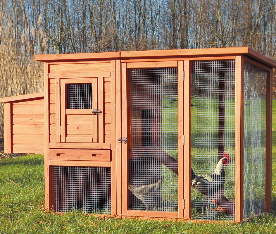 Chicken House trixie trixie chicken coop with outdoor run & reviews | wayfair