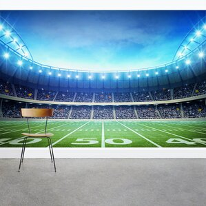 Under The Lights Football Stadium 8u0027 X 144 Photo