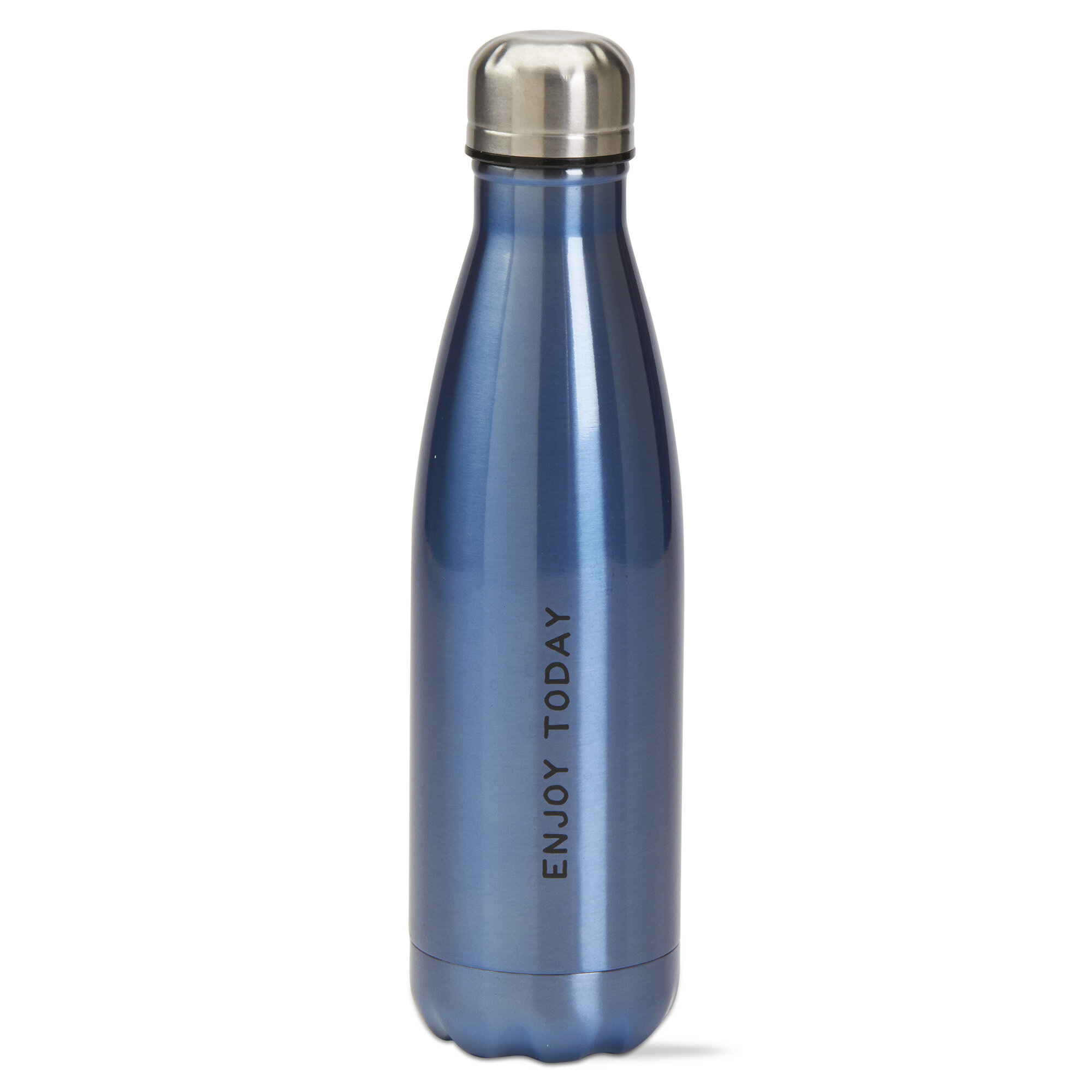TAG Enjoy Today Double Wall Stainless Steel 16 oz. Water Bottle ...