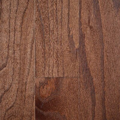 "Riga 3"" Engineered Oak Hardwood Flooring Branton Flooring Collection Finish: Red Oak Granola"