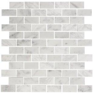 1 X 2 Carrara Marble Mosaic Tile In White