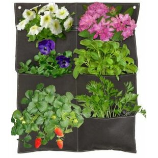 classy idea vertical wall planters. Wall Planter Outdoor Planters You ll Love  Wayfair
