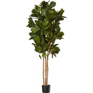 Modern Faux Plants + Florals | AllModern on