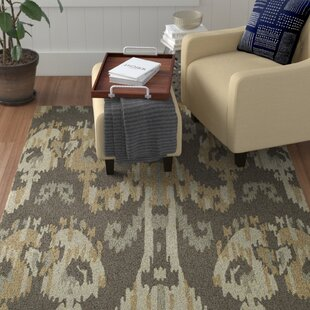 Mudroom Rug Wayfair