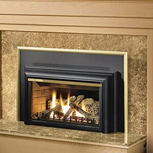 Direct Vent Wall Mount Gas Fireplace Insert by Napoleon