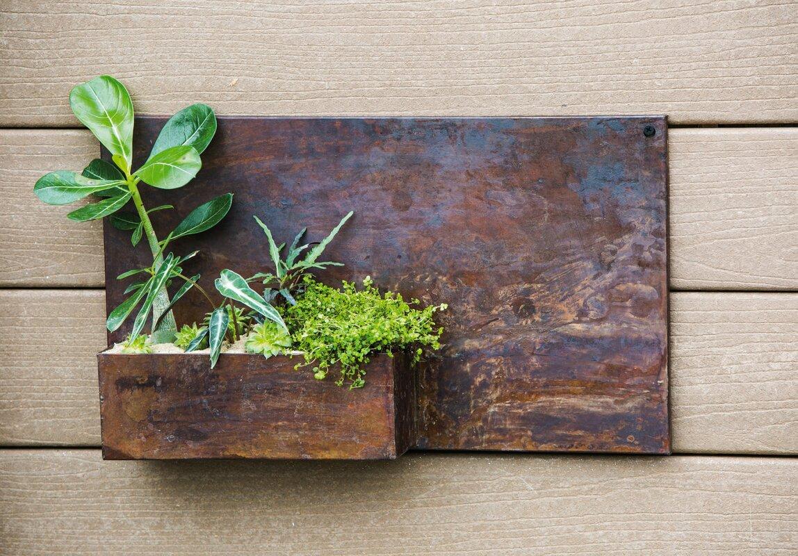 evergreen enterprises inc vita metal wall planter. Black Bedroom Furniture Sets. Home Design Ideas