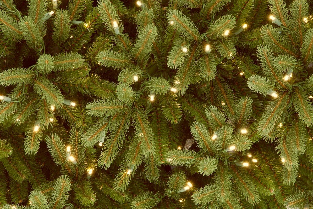 National Tree Co. Jersey Fraser Fir 9' Green Artificial