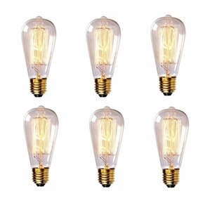 new house lighting. 60W Vintage Incandescent Light Bulb Set Of 6 New House Lighting T