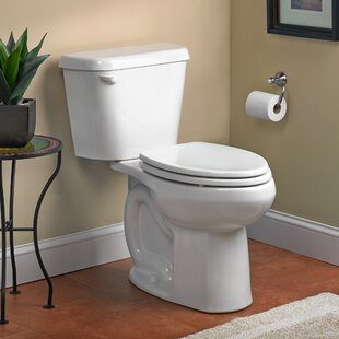 Dual Flush Elongated Toilet Bowl Only Less Tank And 10 Inch Rough In