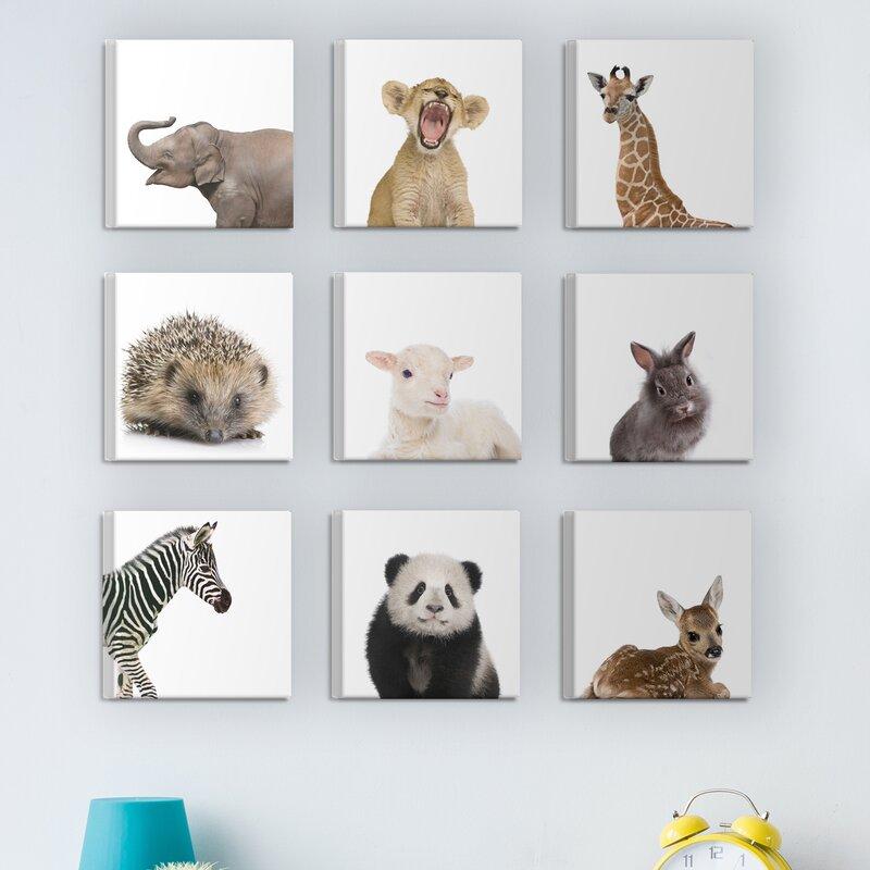 Zoomie Kids \'Baby Animal Studio Portraits\' 9 Piece Canvas Wall Art ...