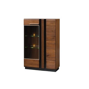 Dashrath Lighted China Cabinet by Latitude Run