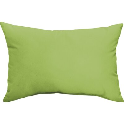 Wrought Studio McMillian Indoor/Outdoor Pillow Set Color: Apple Green