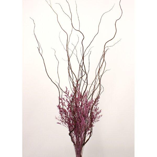 August Grove Tall Curly Willow And Caspia Dried Flower Fl Arrangement Wayfair