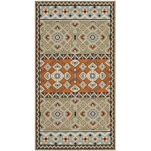 new arrival a6305 e4cfb Mannings Green Orange Indoor Outdoor Area Rug