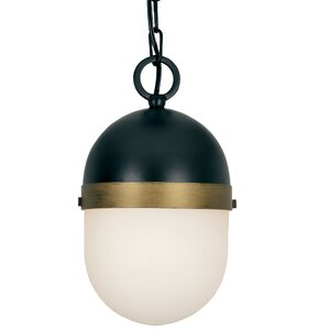 Needham 1-Light LED Outdoor Pendant
