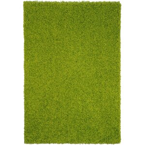 Burns Single Solid Green Shag Area Rug