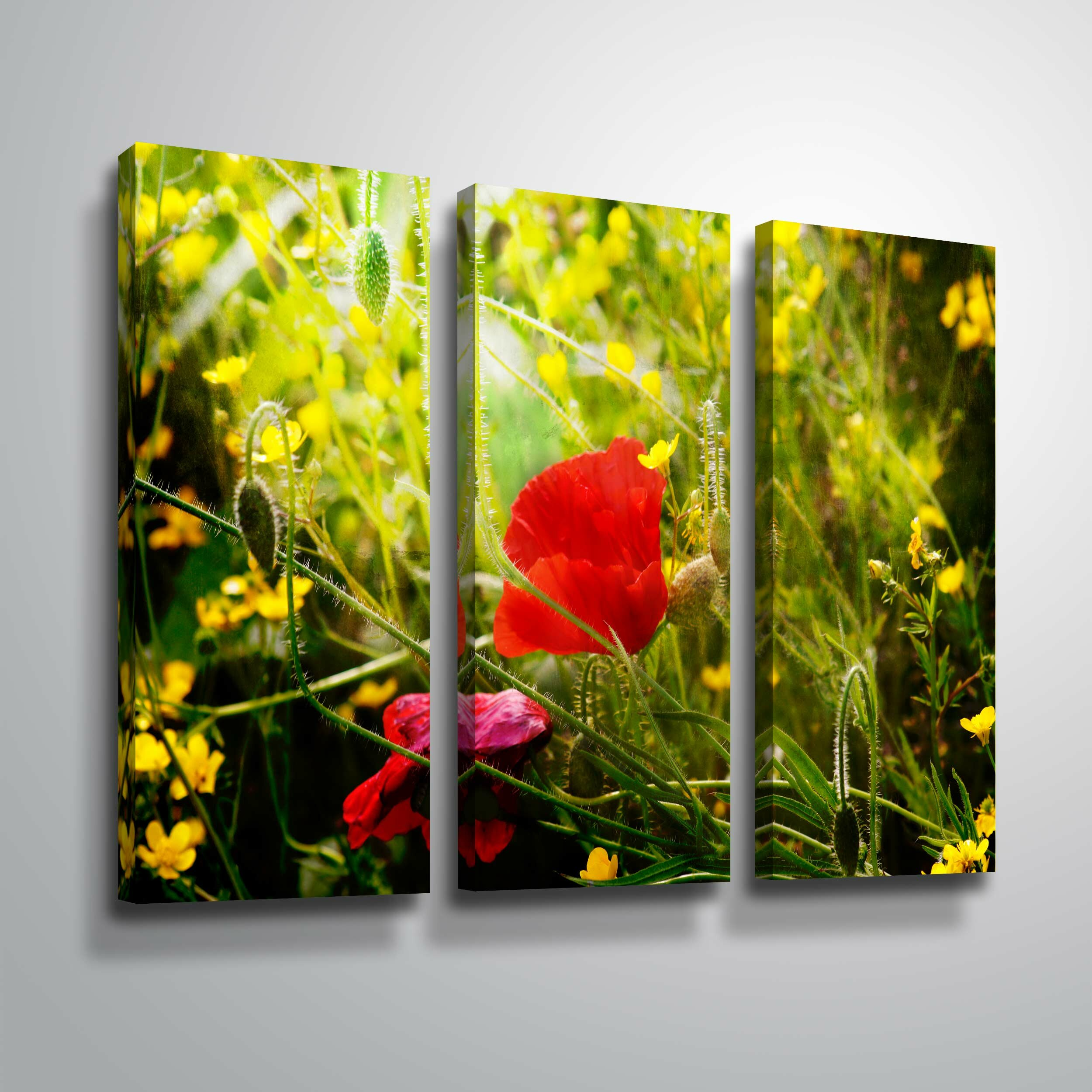 Winston Porter Red Queen Photographic Print Multi Piece Image On Canvas