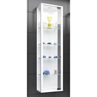 Attirant Wall Hanging Display Cabinets | Wayfair.co.uk