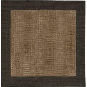 Delightful Owen Checkered Field Cocoa/Black Indoor/Outdoor Area Rug