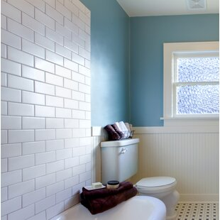 Bullnose Tile Trim You Ll Love Wayfair
