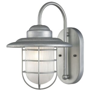 Fitzhugh 1-Light Outdoor Wall Lantern