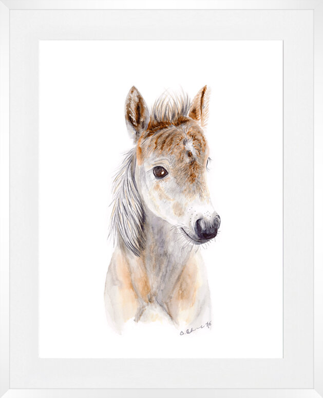 'Baby Horse' by Brett Blumenthal Framed Painting Print