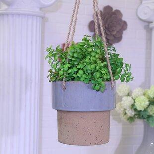 80c3492e3a Ceramic Planters You'll Love | Wayfair