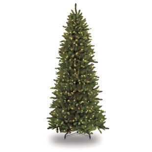 7c182806560a Pre-lit Slim Fraser 9' Green Fir Artificial Christmas Tree with 800 Clear/White  Lights