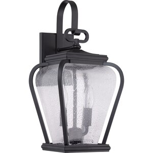 James 2-Light Outdoor Wall Lantern