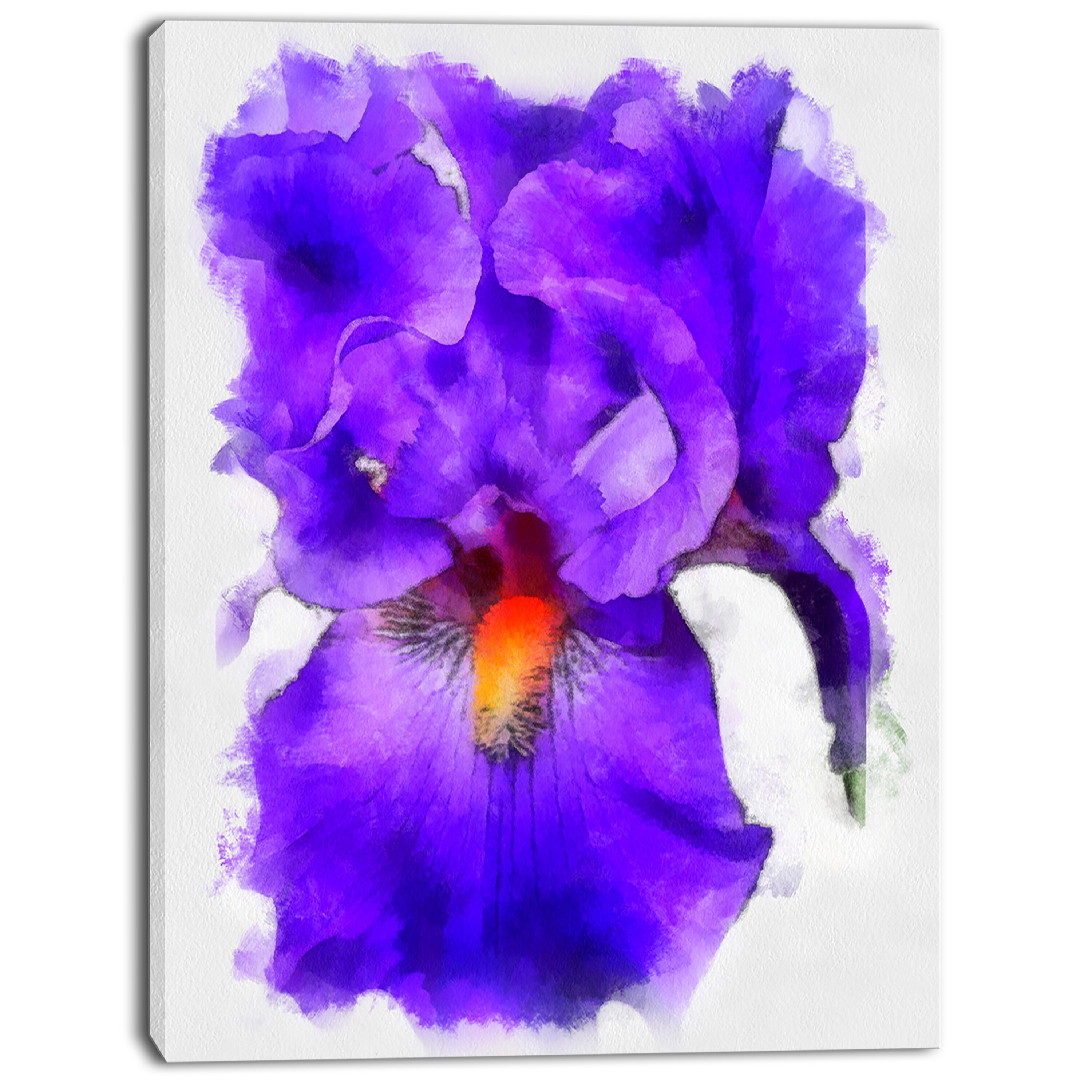 Designart blue iris flower sketch watercolor painting print on designart blue iris flower sketch watercolor painting print on wrapped canvas reviews wayfair izmirmasajfo