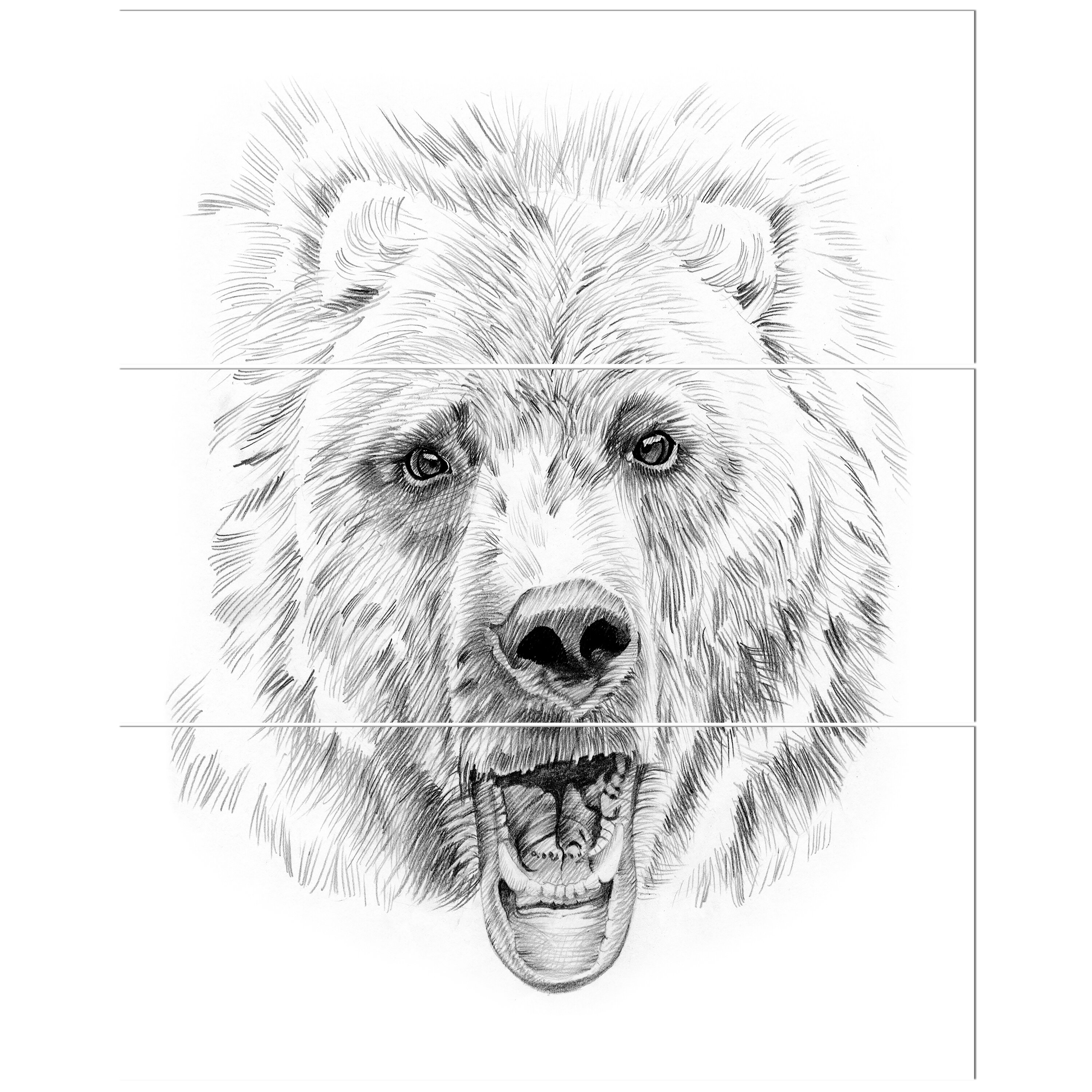 Pencil bear sketch in black and white drawing print multi piece image on canvas