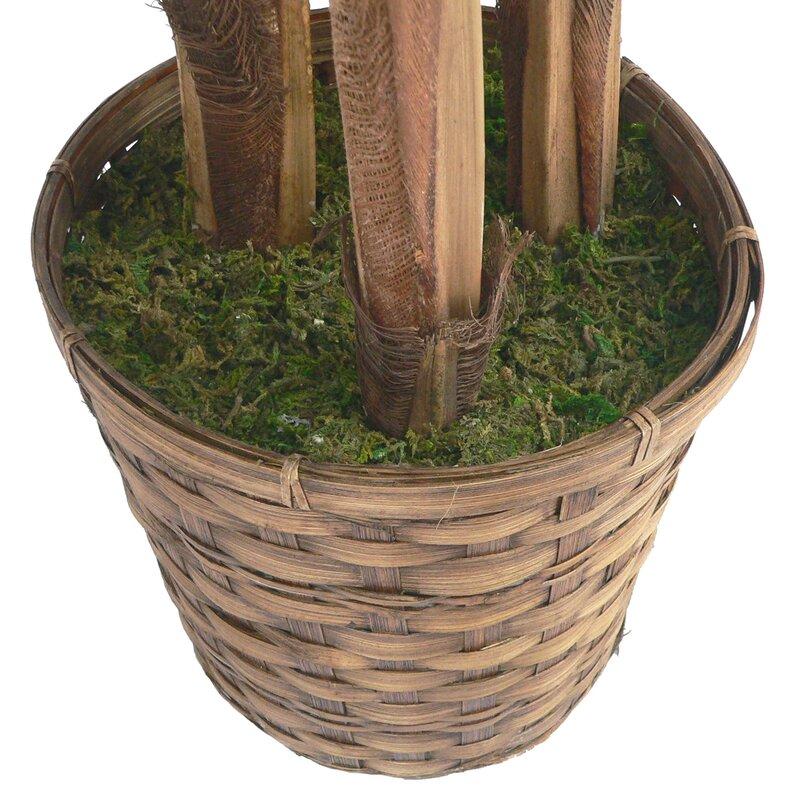 Artificial plants for home decor Tampa fl