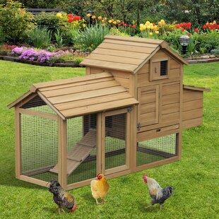 Chicken Coops You'll Love in 2019 | Wayfair ca