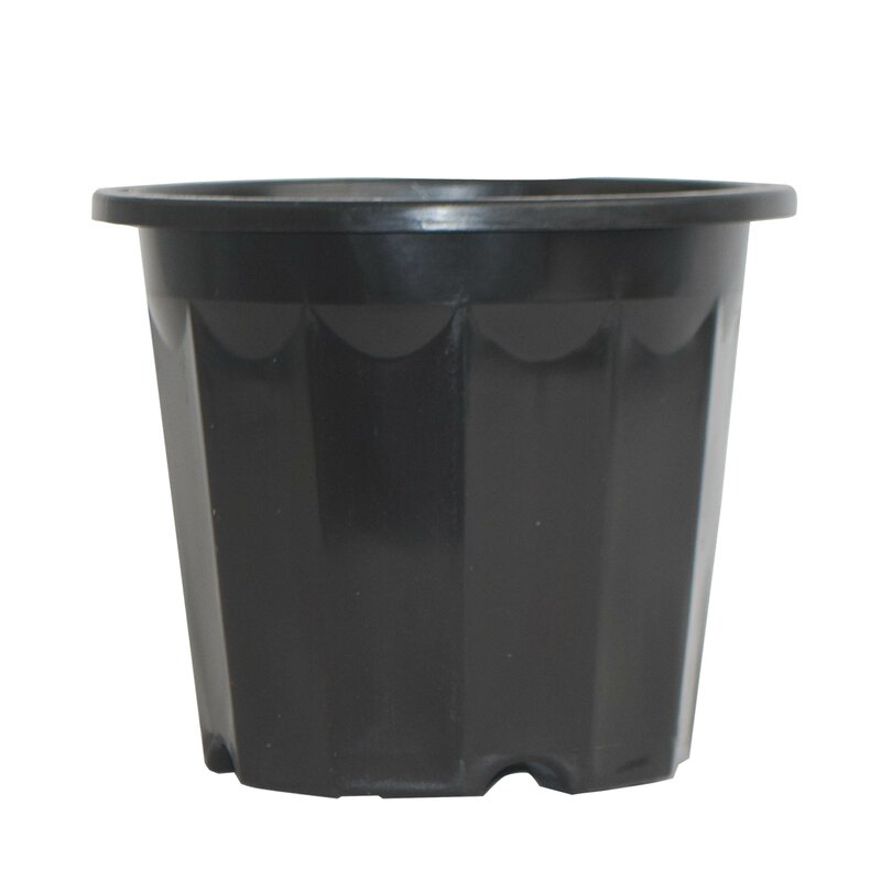 Plastic Nursery Pot Planter