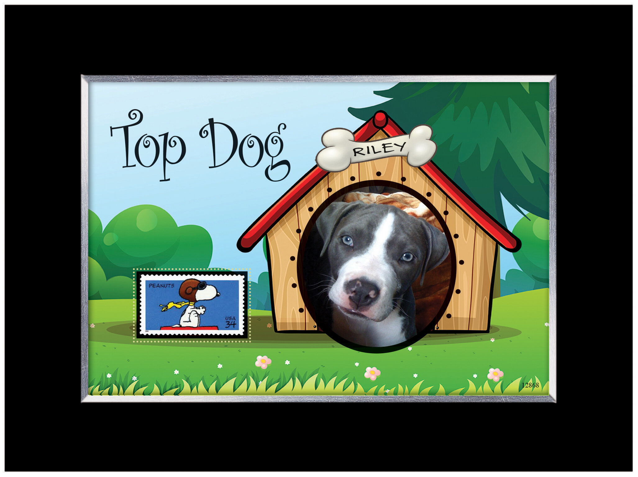 American Coin Treasure Top Dog Personalized Picture Frame | Wayfair