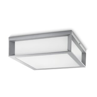 Skies 2-Light Flush Mount by Philips