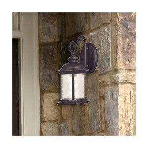 Morrissey 1-Light Outdoor Wall Lantern